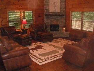 Luxury Log Home Cabin in the Blue Ridge Mtns of VA - Lynchburg vacation rentals