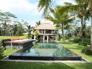Amala Villa Ubud - Ubud vacation rentals