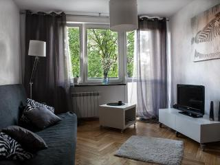 Bruna Apartment - Close to Center Studio - Warsaw vacation rentals