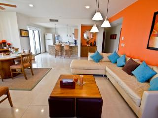 Palmar 308 Penthouse - Playa del Carmen vacation rentals