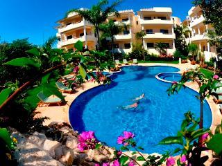 Palmar del Sol #204 - Playa del Carmen vacation rentals