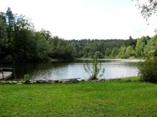Serene Lakefront Cottage - Becket vacation rentals