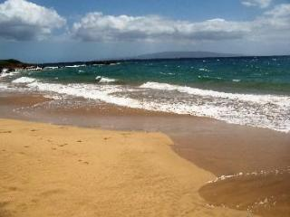 OCEAN VIEW !!! MORE ALOHA FOR YOUR MONEY... - Kihei vacation rentals