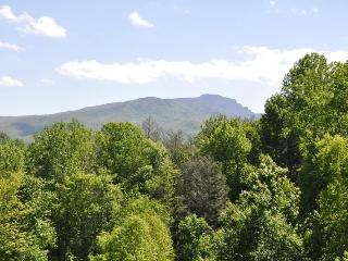 Timbers P-2,  condo w/ Grandfather Mountain view - Boone vacation rentals