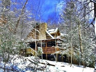 SASSAFRAS LODGE-Quiet  Mountain Setting, Pets OK - Gatlinburg vacation rentals