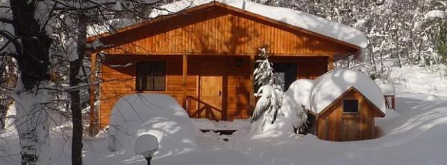 Ski Chile! - Ski Cabin Nº7 - Image 1 - Colorado - rentals