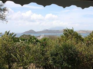 Palm Villa - Nevis - Nevis vacation rentals