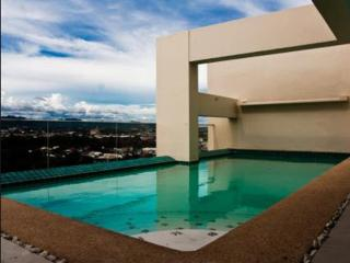 CEBU SPACIOUS CONDO/HOTEL  with Balcony - Cebu City vacation rentals