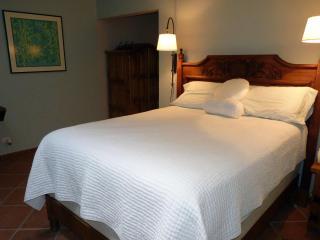 Dec and Jan  Discount  -  Holiday's in San Miguel! - San Miguel de Allende vacation rentals