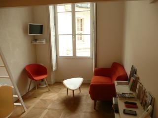 Tangerine studio in the center of Paris - Paris vacation rentals