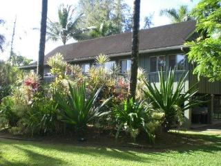 ****NEW SPECIALS*****77 steps to ANINI beach**** - Kauai vacation rentals