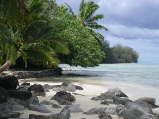 VAIAHURU Value Bungalow with private beach!!! - Society Islands vacation rentals