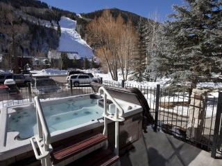 TELLURIDE LODGE 407 - Telluride vacation rentals