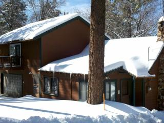 Rustic 90yr Old Cabin/Quiet/HDTV/Hot Tub/Netflix - Big Bear Lake vacation rentals
