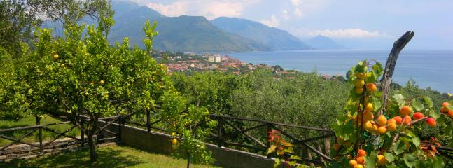 Villa Near a Beach and National Park - Villa Villammare - Image 1 - Villammare - rentals