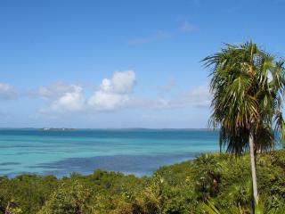 Gumelemi Bluff - Harbour Island vacation rentals