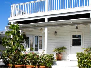 Blue Whale - Harbour Island vacation rentals