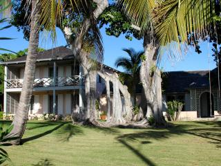 Banyan - Harbour Island vacation rentals