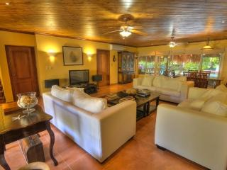 Villa Tortuga Bay 4 Bedroom - B53 - Punta Cana vacation rentals