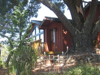 $125/ 550 sq ft studio-Vacation Home Base - Novato vacation rentals