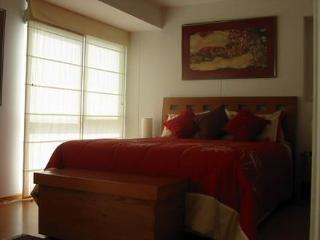 Miraflores Ocean View Direct By Owner - Barranco vacation rentals