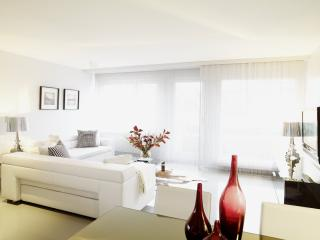 SERVICED SENIOR 2 BEDROOM APARTMENT OERLIKON - Zurich vacation rentals