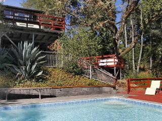 HIDDEN LAKE RETREAT - Sebastopol vacation rentals