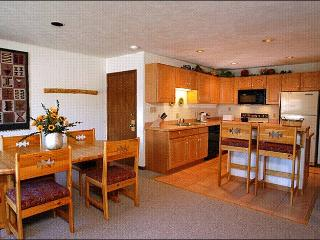 Open and Spacious Condo - Wonderful Year-Round Getaway (1149) - Crested Butte vacation rentals