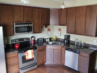 Luxurious Downtown Condo 1 Block off Main Street! - Durango vacation rentals