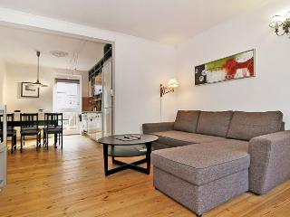 Large Copenhagen apartment near the lakes - Copenhagen vacation rentals