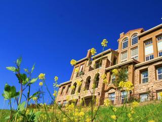 Executive Apt., Hilltop 3 brs, Balcony Views! - San Jose vacation rentals