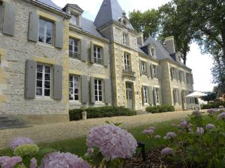 Chateau de Planchevienne - Pougues-les-Eaux vacation rentals