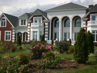 Magnificient Mansion & Villa on private 186 acre estate offering breath taking views of the Blue Ridge Mountains - Lowesville vacation rentals