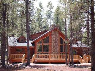 Bearly-A-Cabin Luxury @ Grand Canyon / Flagstaff - Grand Canyon National Park vacation rentals