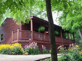 Romantic Mountain Cabin - All Inclusive Rates!!! - Pisgah Forest vacation rentals