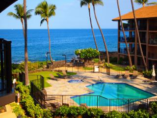 SALE Dolphins & Whales from Lanai Ocean View - Kona Coast vacation rentals