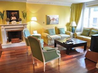 LUX 4 BEDROOMS/ Central / POOL / GRAN CASTELLANA - Madrid vacation rentals