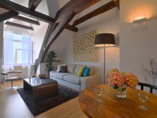 Loft Bedroom Apartment - Nova Bystrice vacation rentals