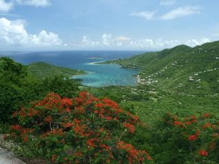 In The Stars St John USVI 4 br with 55 ft lap pool - Coral Bay vacation rentals