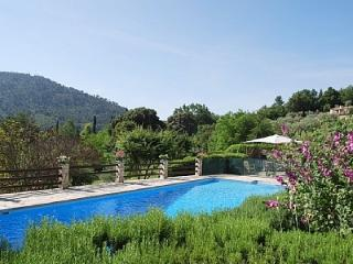 200 year-old Provencal dream house - Fayence vacation rentals