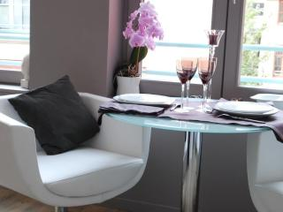 charming 2 people flat in the center of Lille - Lille vacation rentals