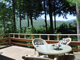 3/3 luxury townhome at Topnotch Resort, Stowe  VT - Stowe vacation rentals
