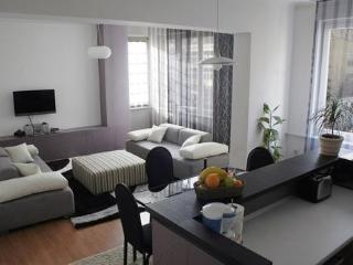SarajevoRent Apartments - Bosnia and Herzegovina vacation rentals