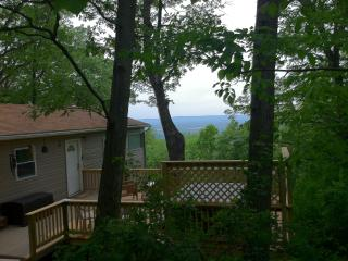 Mountain cabin w/ hot tub + Shenandoah Valley view - Fort Valley vacation rentals