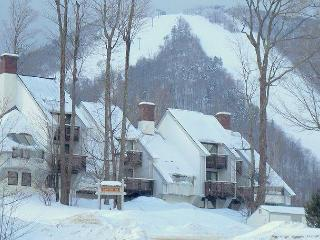 Ski In Ski Out Slopeside Condo full of amenities! - Killington vacation rentals