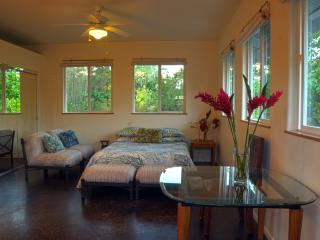 Oliana Cottage at Kehena Beach - Pahoa vacation rentals