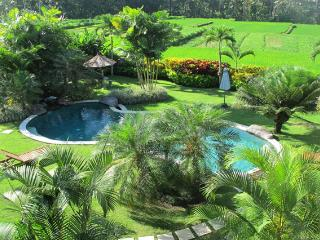 Ubud Green Paradise Large villa 3 Bed with staff - Ubud vacation rentals