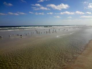 2/2 Condo in BEAUTIFUL Crescent Beach, Florida - Florida North Atlantic Coast vacation rentals