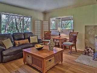 Seventh Heaven  3 bed/2 bath with Hot Tub! - Volcano vacation rentals