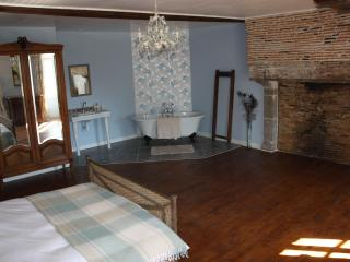 Handsome 15th Century manor house in rural setting - Poitou-Charentes vacation rentals